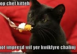 topchefcat