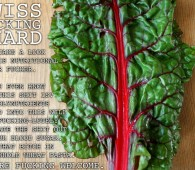Thug Kitchen - Swiss Chard