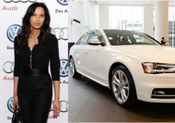 Padma For Audi