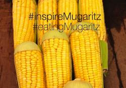 mugaritz instagram