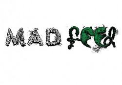madfeed