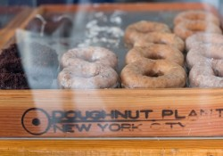 doughnut-plant