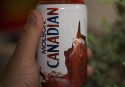 molson-canada