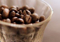 coffeerust
