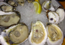 Oysters at Upstate, photo by: Dana Eisenberg for The Braiser