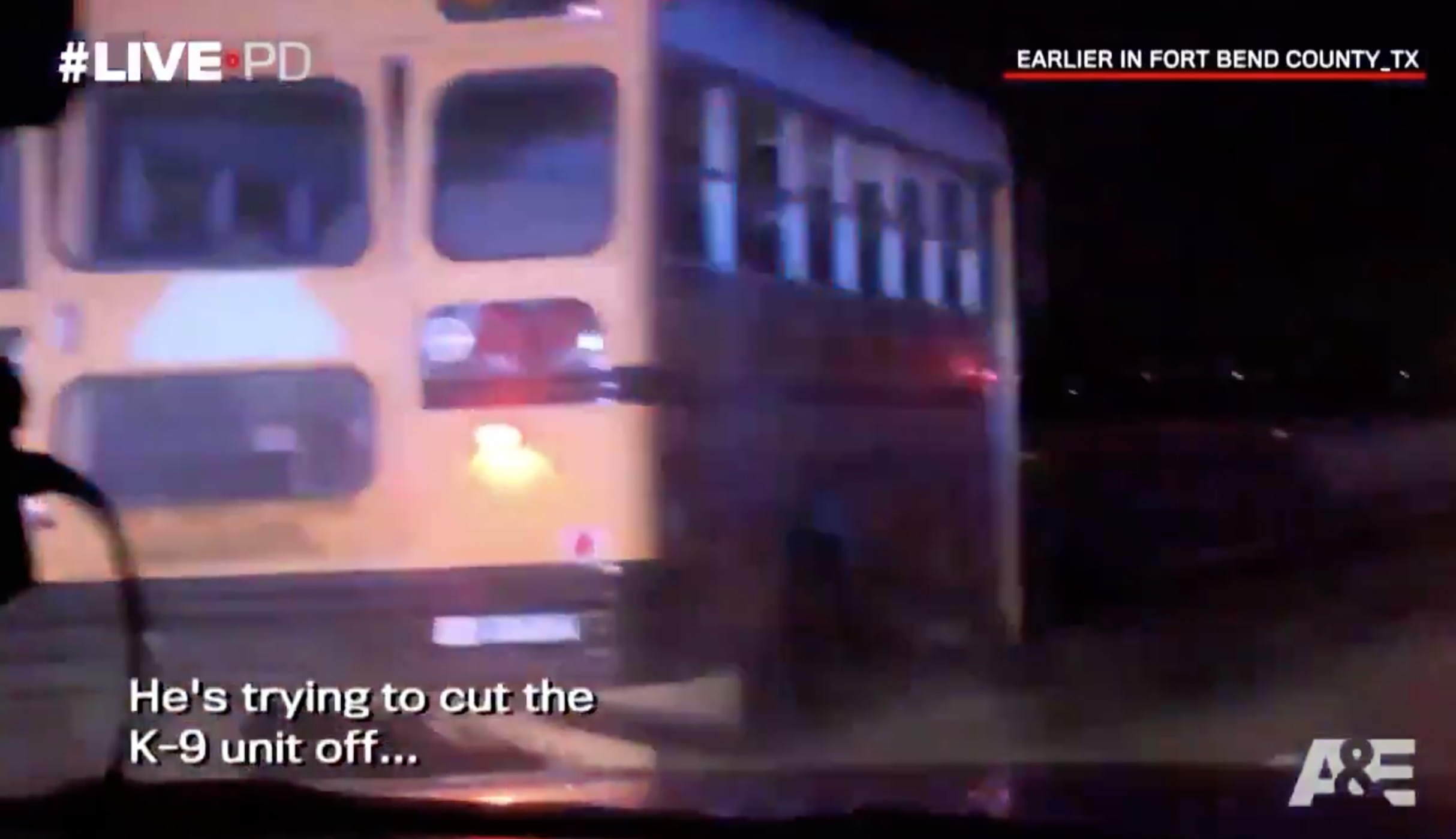 WATCH: Stolen School Bus Takes Police on Wild Chase