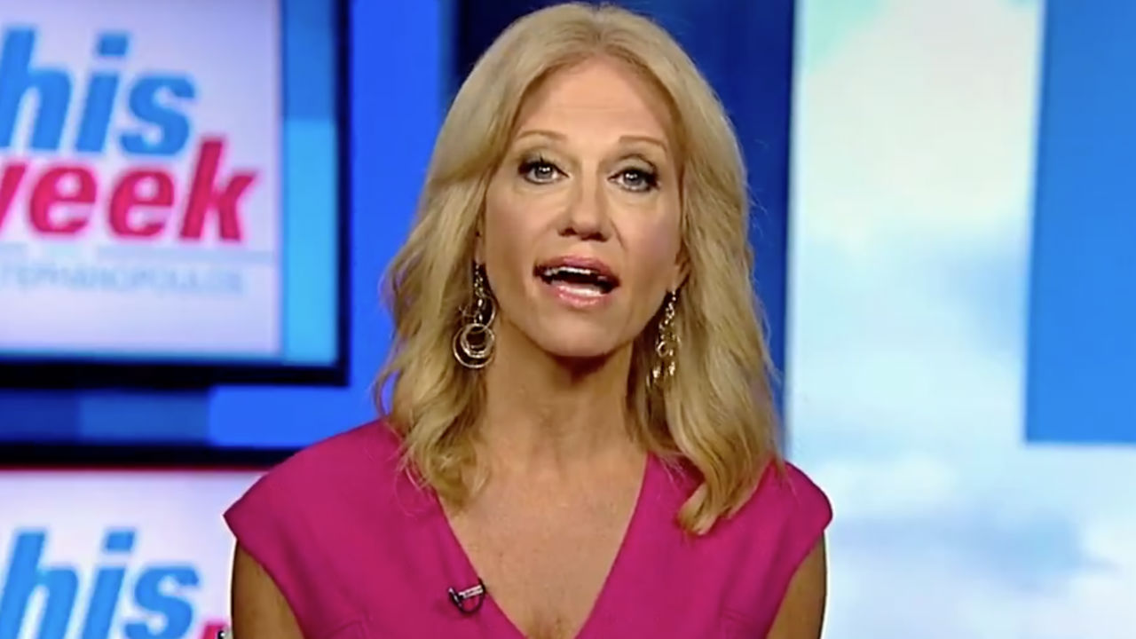 Image result for kellyanne conway abc this week august 12, 2018