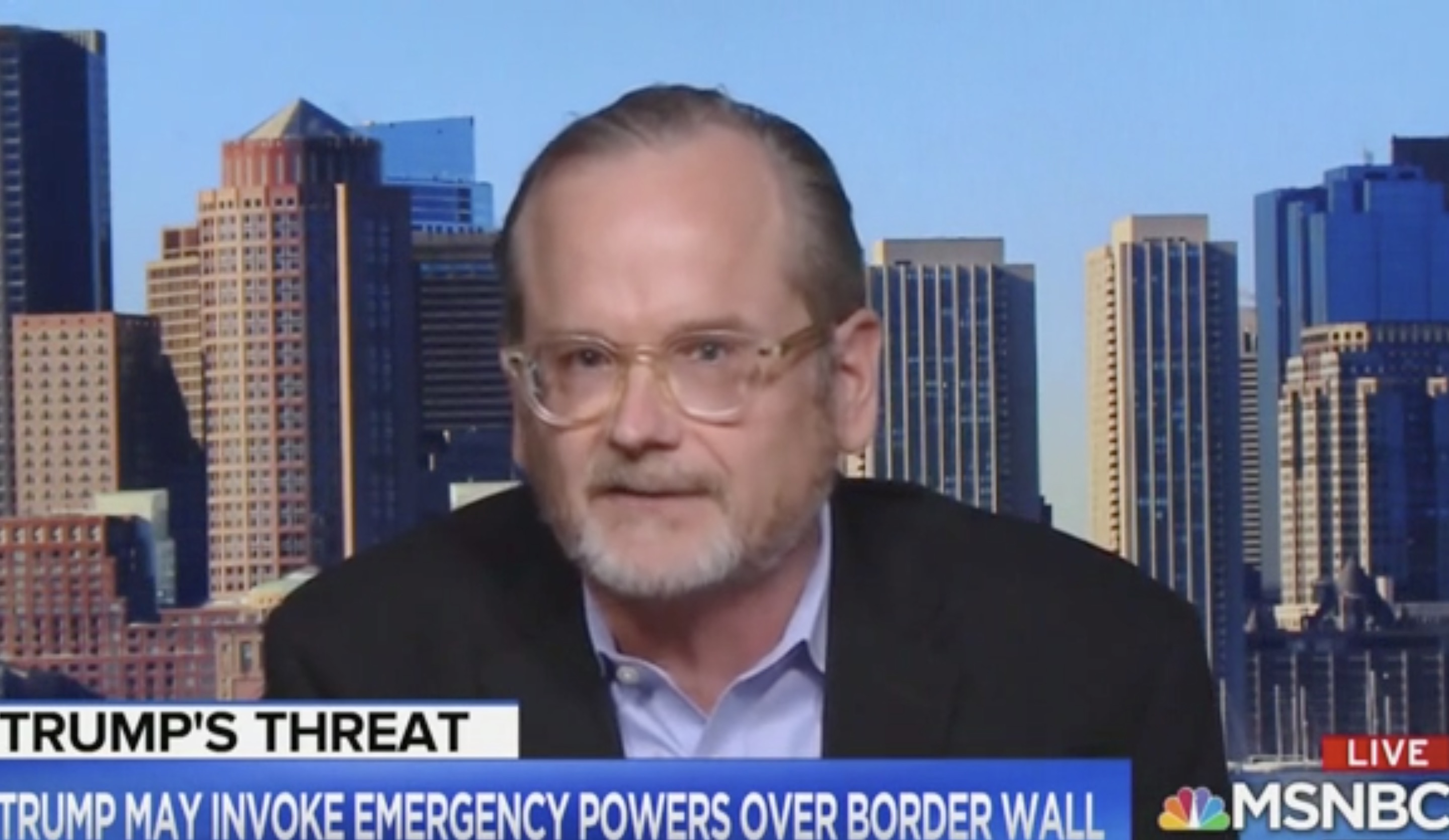 Harvard Law Professor on MSNBC: The Real National Emergency is Donald
