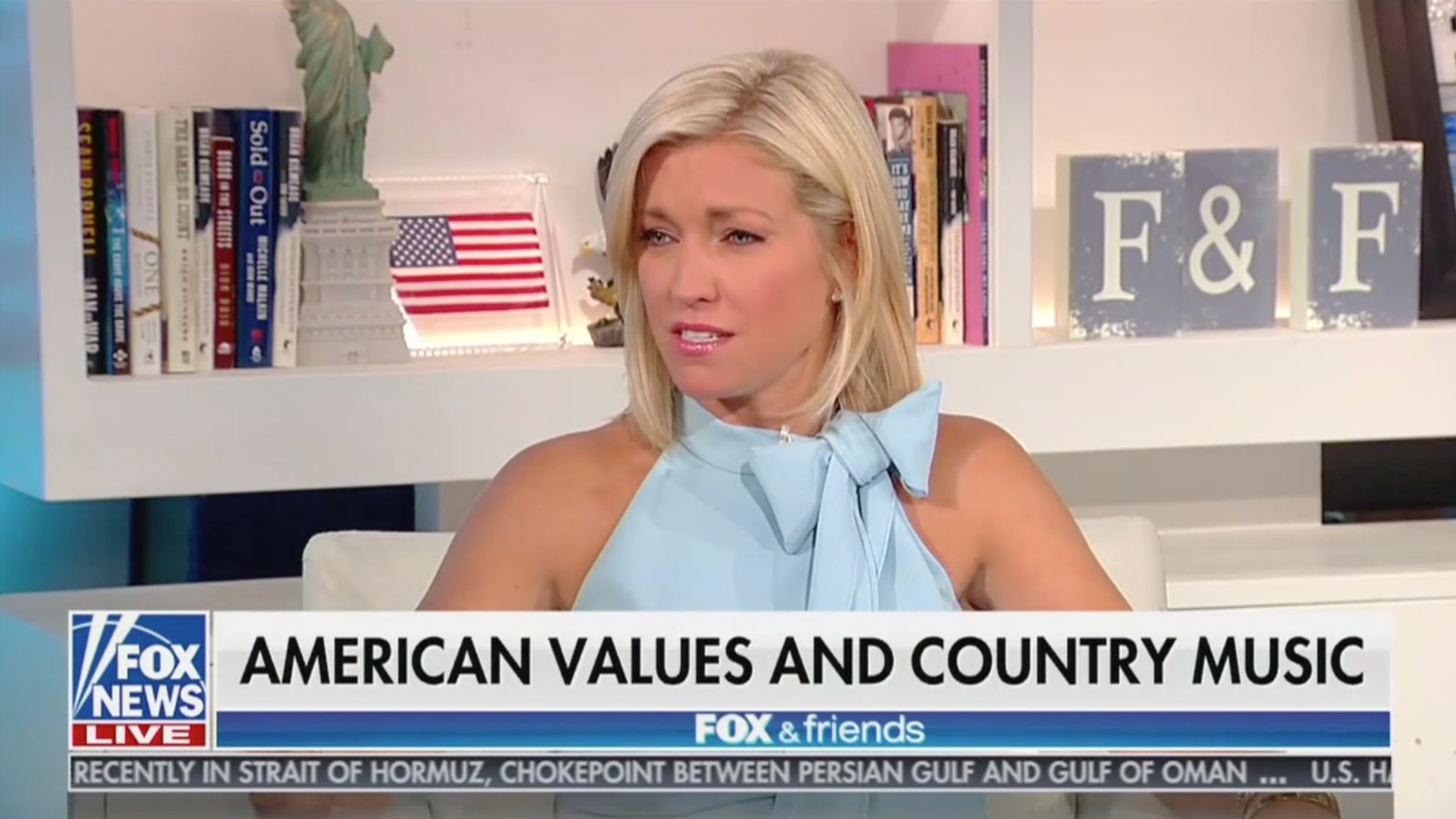 Fox News Host Outraged That Country Singer Used Curse Word in Call For Gun Control