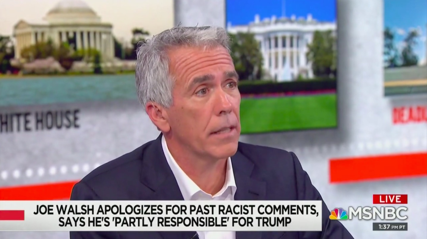 Joe Walsh Confronted With Racist Tweets in Wild MSNBC Interview: 'I've Said Racist Things'