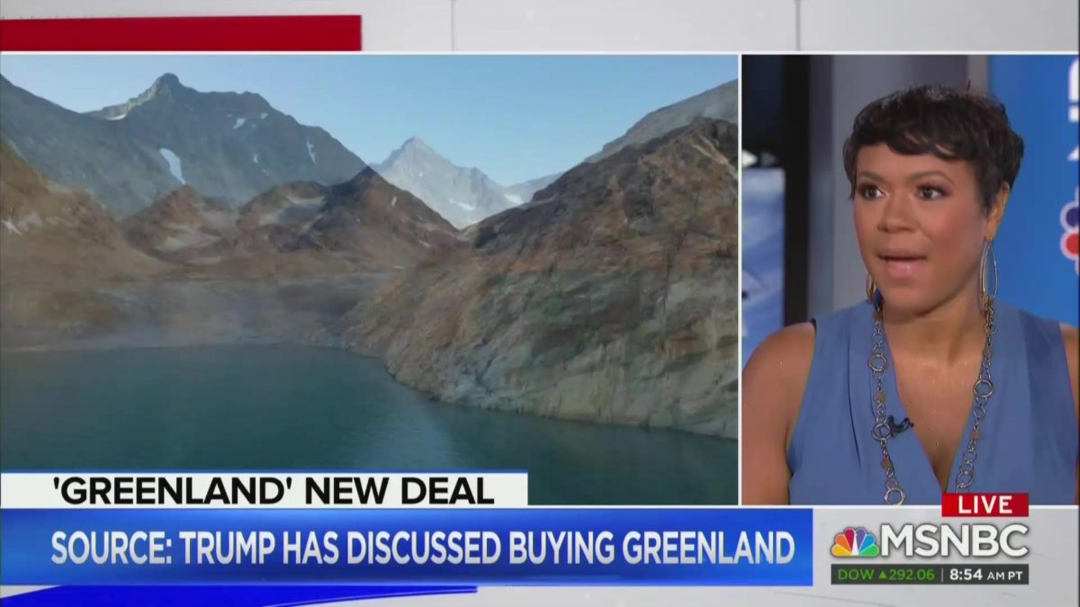 MSNBC Guest Asks If 'Anyone at The MAGA Rally' Can 'Point Out Greenland on a Map'
