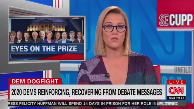 S.E. Cupp Blasts Democrats Criticizing Each Other in Debate: 'Goal of This Whole Thing is to Beat Trump'
