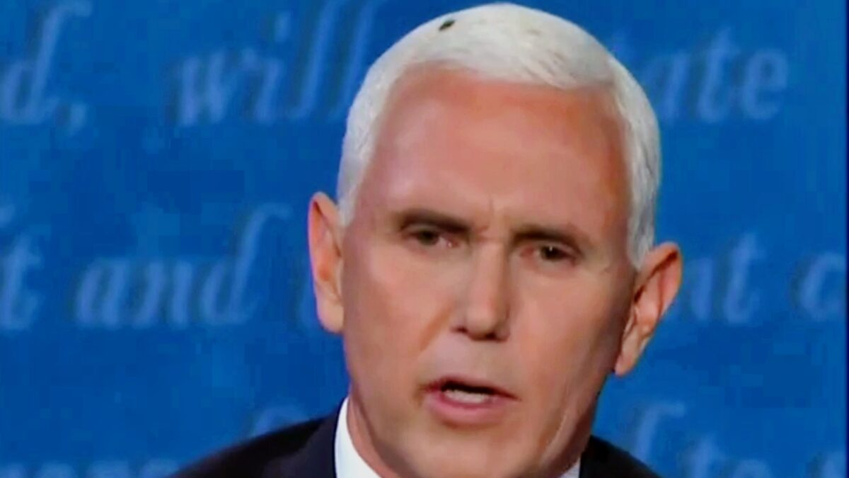 Twitter Nuts for The Fly on Pence's Head #Flygate Trends ...